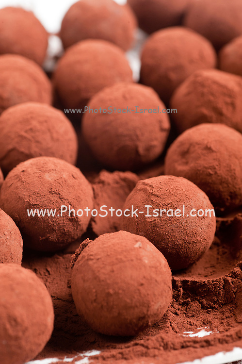 Chocolate truffles with cocoa powder on white background