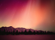 Brilliant red, yellow and purple aurora above spruce forest along shore of Colorado lake, geomagnetic storm during early morning hours of March 31, 2001, Broad Pass, Alaska.