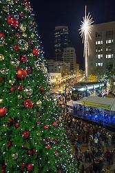 North America, United States, Washington,  Seattle, Giant holiday star and Christmas Tree at  Westlake Park