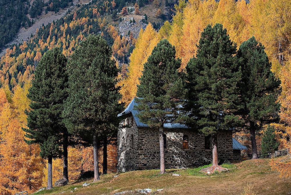BOLZANO, ITALY - OCTOBER 14:   .A a house is hidden behind trees in a forest in Solda that as Autumnal colours appearing  on October 14, 2010 in Bolzano, Italy. Italy is currently enjoying the final warm spells of the summer,however, theshortening daylight hours and cooler weather is bringing Autumn foliage colours across the country.