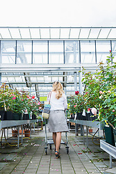 Mature woman shopping in a garden centre, Augsburg, Bavaria, Germany