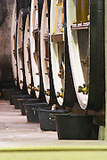 wooden vats domaine fussiacus macon burgundy france