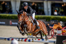 Breen Shane, IRL, Can Ya Makan<br /> Longines FEI Jumping Nations Cup™ Final<br /> Barcelona 20128<br /> © Hippo Foto - Dirk Caremans<br /> 07/10/2018