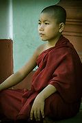 Young Monk Meditating at the Shwedagon Pagoda complex in the center of Yangon (Rangoon), It is the most sacred Buddhist stupa in Myanmar and one of the most important religious reliquary monuments in the world