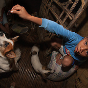 Small boy feeding the family dogs at Barangay Tagibinet, Palawan, The Philippines.<br />