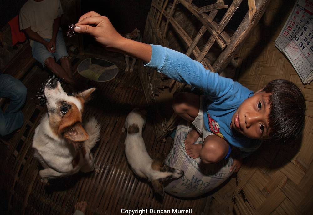 Small boy feeding the family dogs at Barangay Tagibinet, Palawan, The Philippines.<br /> I stayed with this very friendly family while I was photographing Ugong Rock, a karst limestone pinnacle with cave passages leading to the summit. The city of Puerto Princesa has developed it as a new ecotourism destination. There is now a zipline connected to Ugong Rock.