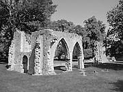 Armagh Friary, Armagh City, Armagh