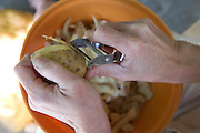 woman hand peeling potatoes with a peeler