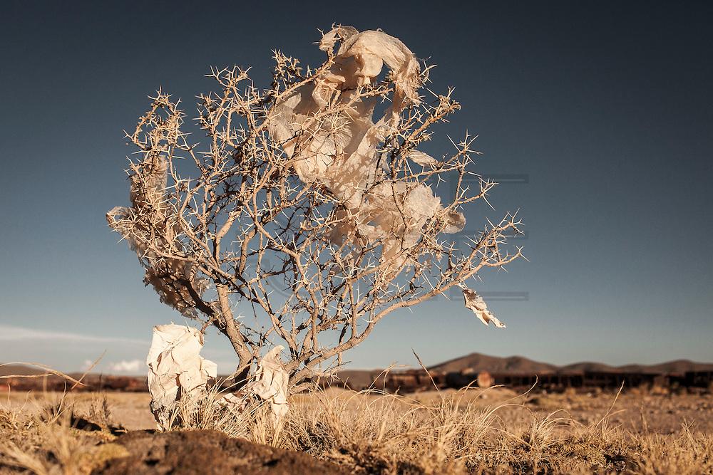 Plastic tree #23