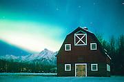 Alaska. Palmer. Aurora borealis or northern lights glow above a barn in the Matanuska Valley.