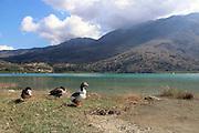 Lake Kournas, Crete Island