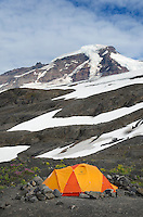 Tents at climbers camp on slopes of Heliotrope Ridge, Mount Baker Wilderness North cascades Washington