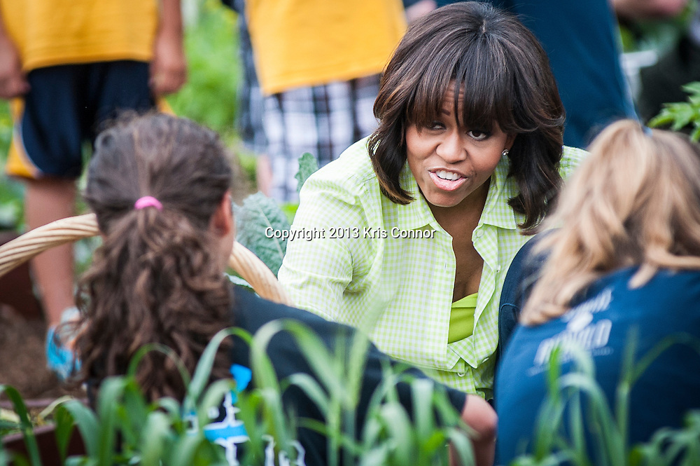 First Lady Michelle Obama joins students from Sarah Moore Greene Magnet Technology Academy School, Knox County, TN and with other school children from across the country harvest the White House Kitchen Garden for the fifth year in a row at the White House on May 28, 2013 in Washington DC. Photo by Kris Connor