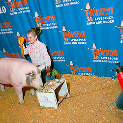 Houston, Texas - March 2010- Jaycy Rowden of Brownville Texasis poses with her winning (5th place) barrow, Uncle Fatty, for a souvenir photo at the Houston Rodeo.  The barrows are kept posing with a mixture of feed and marshmallows on a stool that is pulled by an assistant, before it is led off to the slaughterhouse.   Photo by Susana Raab