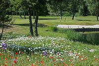 BRIELLE - green hole 13.  Kleiburg , golfbaan.  COPYRIGHT KOEN SUYK