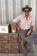 Crop dusting. Boxes of the defoliant Paraquat, which is sprayed on cotton prior to harvest in Kern County, California, USA, by crop dusters.