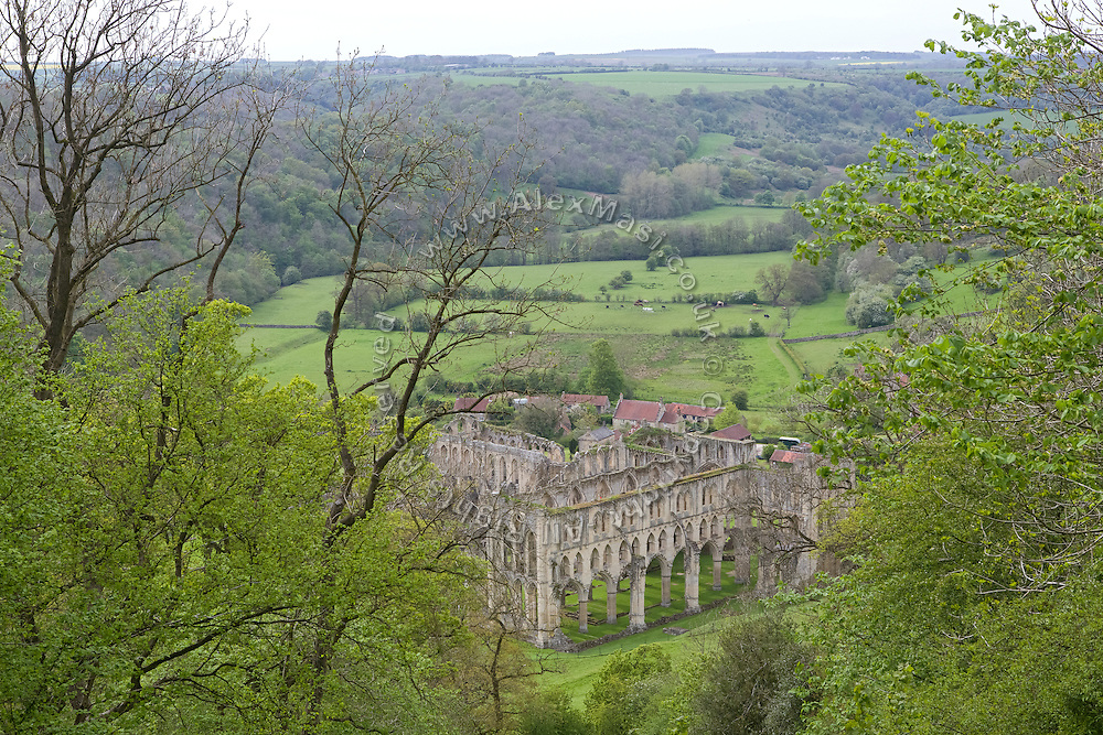 Rievaulx Abbey is standing among greenery in Yorkshire, England, United Kingdom.