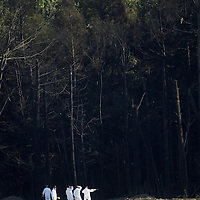 PIT2001091104 - 09SEPTEMBER2001 - SHANKSVILLE, PENNSYLVANIA, USA:  Investigators dressed in white and carrying yellow and red flags enters the treeline behind  the crater cause by the crash of United Airlines'  Flight 93 near Shanksville Pennsylvania killing all 45 people on board.  ac/Archie Carpenter     UPI