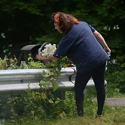 July 13, 2017 - Solebury Township, Bucks County, Pennsylvania, U.S. - A woman places flowers at the scene on Day five in the search for missing Bucks County men on Thursday. A Pennsylvania man under suspicion for his connection to the disappearance of four men who disappeared in rural Pennsylvania last weekend has confessed to their murders. (Credit Image: © Chris Shipley/TNS via ZUMA Wire)