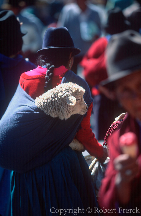ECUADOR, MARKETS, CRAFTS Saquisili market woman and sheep