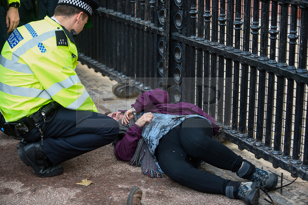 © Licensed to London News Pictures. 15/10/2019. LONDON, UK. A climate activist from Extinction Rebellion lies handcuffed, prior to being arrested, outside the gates to Buckingham Palace during a Grandparents protest.  Activists are calling on the government to take immediate action against the negative effects of climate change.  Photo credit: Stephen Chung/LNP