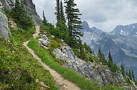 Abbott Ridge Trail along cliffs below Mount Abbott. Selkirk Mountains Glacier National Park British Columbia