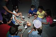 Israel, Jordan Valley, Kibbutz Ashdot Yaacov, Lag Ba'Omer celebration with a bonfire. Children cooking marshmallows