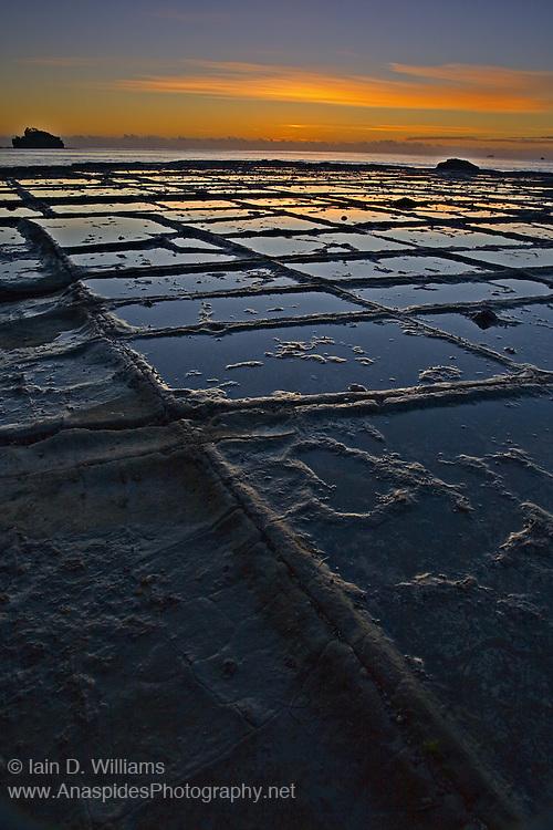 Tessellated Pavement - Tasmania