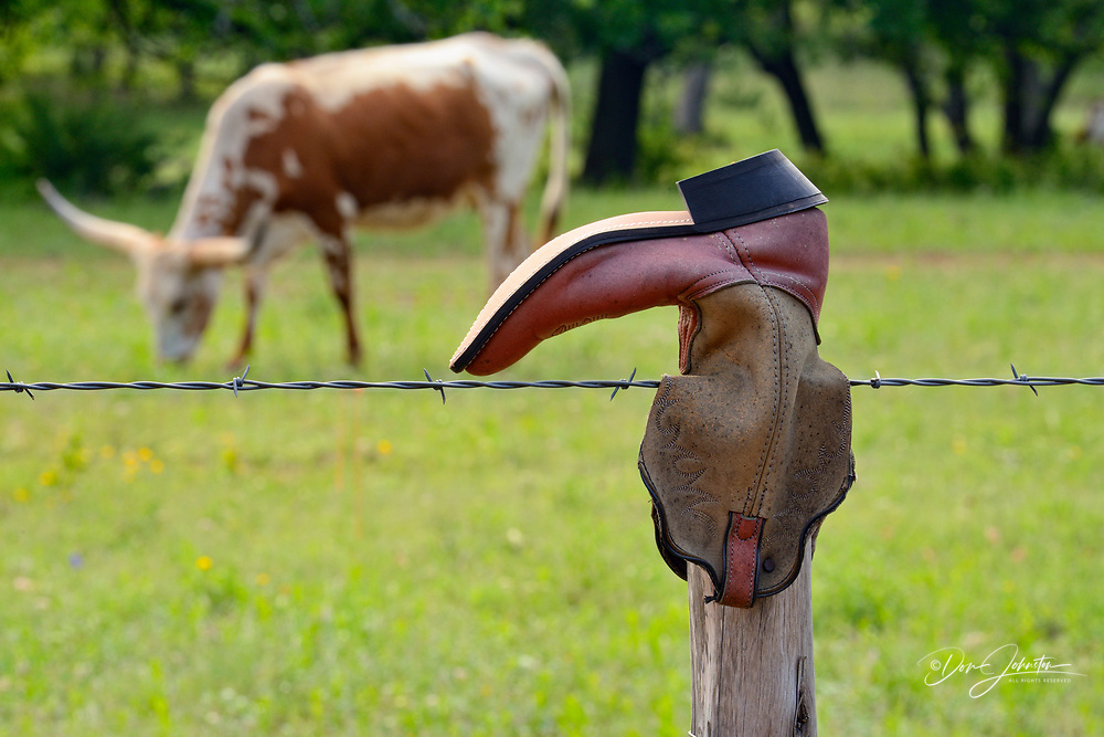 Cowboy boots on fenceposts, Willow City, Texas, USA