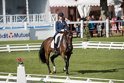 Blom Merel, NED, The Quizmaster<br /> World Championship Young Eventing Horses<br /> Mondial du Lion - Le Lion d'Angers 2016<br /> © Hippo Foto - Dirk Caremans<br /> 21/10/2016