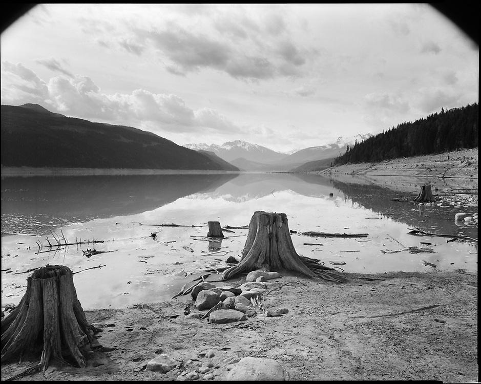 Stumps at low water, Upper Kinbasket Lake, British Columbia 2016