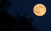 September 20, 2021 - USA:  Harvest Moon Sets in United States