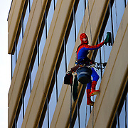 Window washer Mark Rhodes with Pro Window Cleaning Service, Inc. donned a Spiderman costume on Halloween to clean the east side of Two Pershing Square at 2300 Main in Kansas City, Missouri.