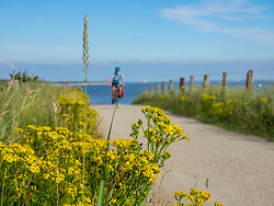 Woman riding bike on dirt track against sea