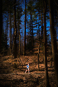 Lone runner and trees at the the HAT Run 50k held in Susquehanna State Park in Maryland.