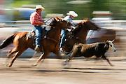 Augusta Montana Rodeo.