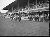 1986 - Guinness Competitions At The Dublin Horse Show. (R39)