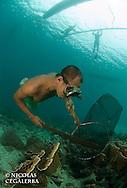 Pecheur à la recherche de poissons cardinaux des iles Banggais<br /> <br /> Poisson cardinal des iles Banggais, Pterapogon kauderni. Endémique des Îles Banggais, ce poisson possède une aire de répartition très limitée pour un poisson marin. Depuis quelques années, il subit une forte pression de la pêche pour le commerce de l'aquariophilie (plusieurs milliers de poissons sont capturés chaque mois) ce qui a conduit cette espèce en 2007 a être classée dans la catégorie Endangered sur la liste rouge de l'UICN. village de Bonebaru sur l'ile Banggai dans les Sulawesis en Indonésie - Mission Banggai Cardinal Fish, Mai 2008, Act for Nature - Musee oceanographique de Monaco