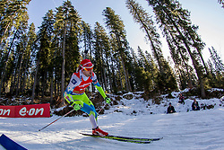 Jakov Fak (SLO) competes during Men 12,5 km Pursuit at day 3 of IBU Biathlon World Cup 2015/16 Pokljuka, on December 19, 2015 in Rudno polje, Pokljuka, Slovenia. Photo by Urban Urbanc / Sportida