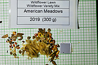 Wildflower Lawn Variety Mix seeds from American Meadows. Image taken with a Fuji X-H1 camera and 80 mm f/2.8 macro lens + 1.4x teleconverter