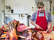 30 APRIL 2020 - STANHOPE, IOWA: JORDAN TEEL trims beef before turning it into hamburger at Stanhope Locker and Market, in Stanhope, Iowa. The family owned meat locker slaughters and butchers beef cattle, pigs, and sheep. The COVID-19 (SARS-CoV-2/Coronavirus) pandemic has spread among employees in the meat packing plants in the Iowa, Nebraska, South Dakota, and Minnesota, forcing many to close or curtail operations. This has resulted in farmers euthanizing thousands of pigs and beef cattle. Pork production has been slashed by about 40% because of the pandemic. Meat lockers and family owned butchering facilities have been swamped with farmers and ranchers trying to sell their livestock to them rather than the meat packing plants, but the meat lockers are backed up by the huge increase in supply. Many meat lockers are now full through the end of the year. Stanhope Locker and Market doesn't have any openings for slaughtering and butchering either cattle or pigs until mid-December 2020.         PHOTO BY JACK KURTZ