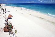 white sand beach, Playa del Carmen, Yucatan Peninsula, Quintana Roo, Mexico ( Caribbean Sea / Western Atlantic Ocean )