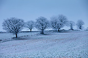 Hoar frost on trees and fields in wintry landscape in The Cotswolds in England