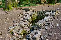 France, Ille-et-Vilaine (35), forêt de Brocéliande, fontaine de Barenton, lieu mythologique // France, Ille-et-Vilaine (35), Forest of Brocéliande, Fountain of Barenton, Mythological Location