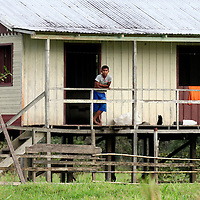 South America, Brazil, Amazon.  Two males watch the river from their house on stilts on the Amazon bank.