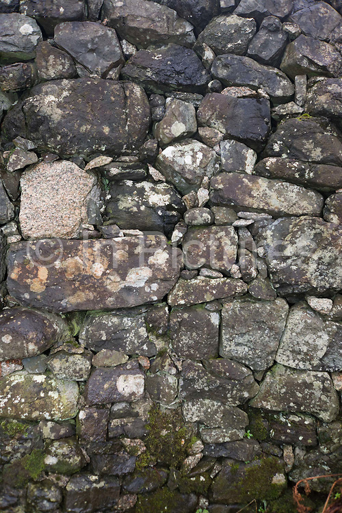 A stone wall detail at the Old Smithy, Pennyghael, Isle of Mull, Scotland. In a close-up view, we see the tight fitting stones interlocked to provide strength as well as security for this domestic property. Their are few weeds telling us the wall is well-maintained and it is likely that only local materials have been used in this and other buildings. The origins of building in dry stone, i.e. without the use of mortar, are lost in the mists of antiquity. The use of stone in various builds such as funeral chambers and living accommodation date from the Stone and Iron Ages. Regional styles and patterns of construction do vary throughout the country but the principles of construction established thousands of years ago are still practiced to this day. Regrettably, there is little written historical record of those who practiced the craft in the early days.