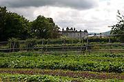 Walled garden at Longueville House, Mallow, County Cork, Ireland.
