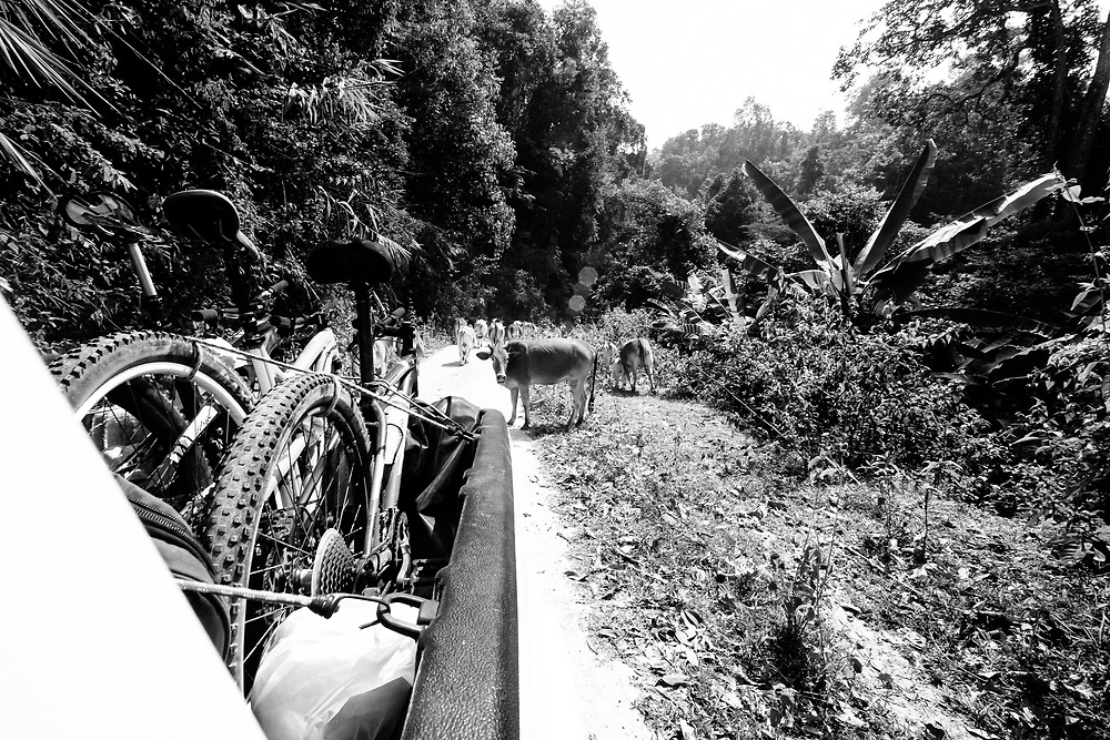 Andrew Whiteford rides on a 4 x 4 shuttle road to Doi Bakia in the jungle near Ban Sop Gai, Thailand.