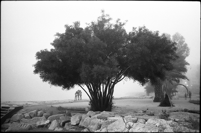 The melancholic landscapes are united in the single series not by accident. The journeys often awake my melancholy and inspired me. These photographs were made in France, Russia and Spain. 2008 - 2010