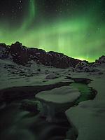 Northern Lights over Þingvellir National Park, South Iceland.